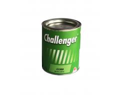 CHALLENGER CL 300 MATINIS PRIEDAS 2K DANGOMS